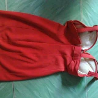 Đầm body của huengoc29 tại Cần Thơ - 2971560