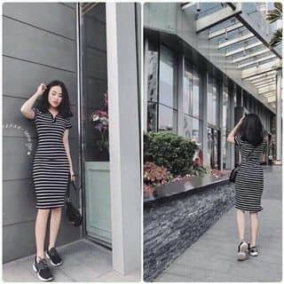 Đầm body của nguyentuyen1280 tại Khánh Hòa - 2676075