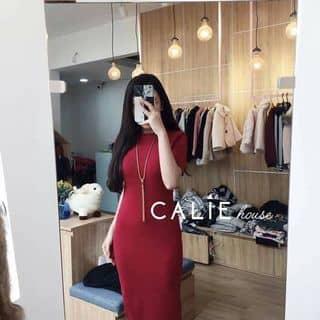 Đầm body thun gân tay ngắn #145k của lapis tại Hồ Chí Minh - 2912692