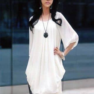 Đầm chiffon Hàn Quốc của phamdiem2005 tại Hồ Chí Minh - 2482663