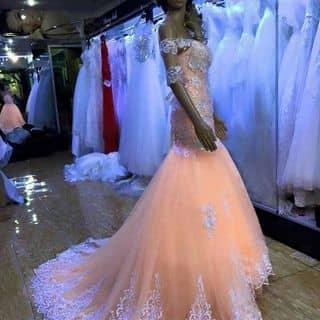 Đầm cưới body đuôi cá hàng mới của diemkieu71 tại Bạc Liêu - 2098712