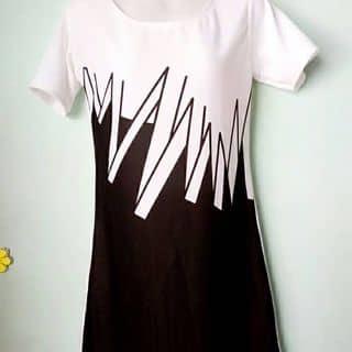Đầm dáng suông của hanwook tại Đồng Tháp - 1713363