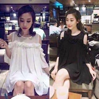 Đầm rớt vai của nguyenduyen390 tại Phú Yên - 2010008