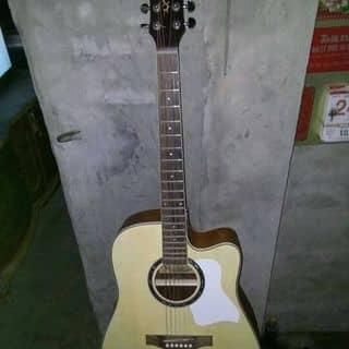 Đàn Acoustic của acousticminh tại Ninh Bình - 2407452