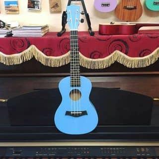 Đàn ukulele của caonho3 tại tt.Ngô Đồng, Huyện Giao Thủy, Nam Định - 2637933