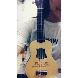 Đàn ukulele 💃  của tayngan7 tại Hải Dương - 1538793