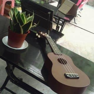 Đàn ukulele giá rẻ của baomy2 tại Hồ Chí Minh - 2717162