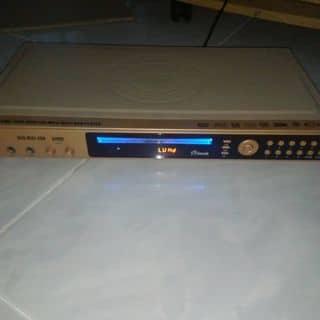 Dau dvd của daiviet3987 tại Bình Dương - 2004292