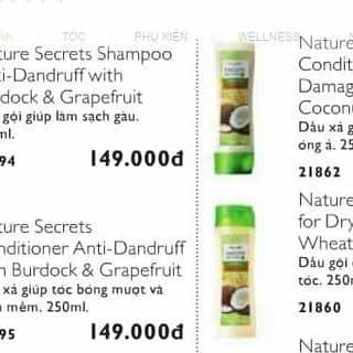 Dầu gội, dầu xả Nature của chuothue1 tại Yên Bái - 2281200