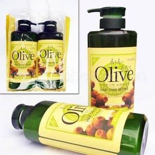 Dau gọi Olive của mphaiduong tại Hải Dương - 1771401