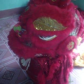 Đầu lân của duongdaidai tại Shop online, Huyện Nguyên Bình, Cao Bằng - 2211512