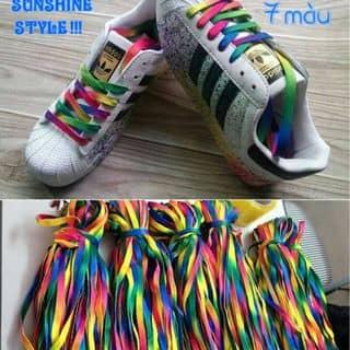 Dây giày 7 màu của malangthang tại Điện Biên - 2919500
