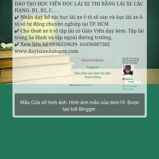 Daylaixeautopro.com.vn của hoangphi64 tại Hồ Chí Minh - 2599099