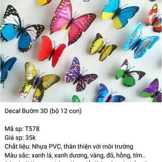 Decal bướm 3D của anhphan92 tại Hà Nam - 1604976