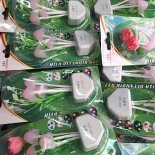 Đèn ngủ hình nấm siêu dễ thương của vishop tại Sóc Trăng - 3522655