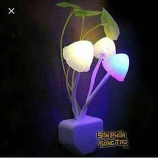 Đèn ngủ tự động sáng khi trời tối của tranthienbinh13081996 tại Vĩnh Phúc - 1858651