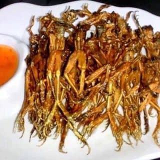 Đồ ăn khô của hieunguyen0123 tại Điện Biên - 3309625