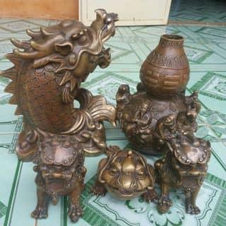 Đồ cổ của camvantruongnguyen tại Bình Phước - 1248457
