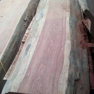 đồ gỗ tự nhiên của vulong69 tại 7 Tháng 5, Nam Thanh, Thành Phố Điện Biên Phủ, Điện Biên - 1149900
