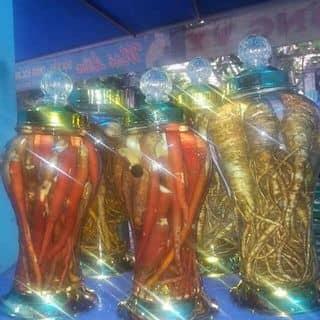 Đồ ngâm rượu, thảo dược, dược liệu từ Mù Cang Chải của tamanhpq tại Thành Phố Vũng Tàu, Bà Rịa - Vũng Tàu - 2781919