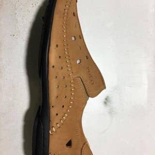 Đôi giày Polo của doanphamkhiem tại 112 Lê Thánh Tôn, Quận 1, Hồ Chí Minh - 2958224