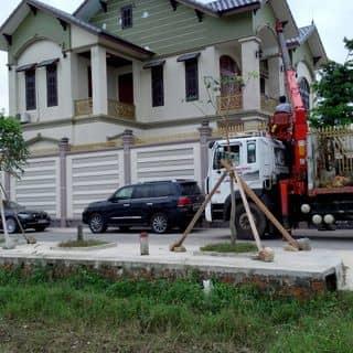 Dự Án 1000 Net của actionvip tại Đà Nẵng - 1765539