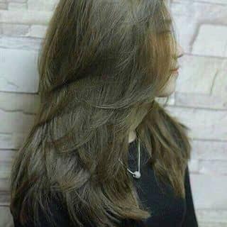 DV làm tóc của phuc7777 tại 251 Núi Thành, Quận Hải Châu, Đà Nẵng - 2056791