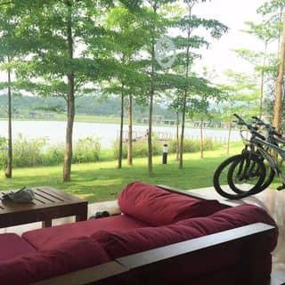 Flamingo Đại Lải Resort của lamlong9010 tại Vĩnh Yên, Vĩnh Phúc, Thành Phố Vĩnh Yên, Vĩnh Phúc - 4464739
