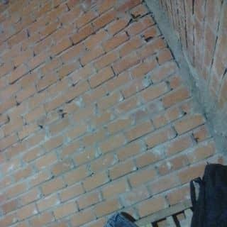 Gà cay fomai của liecduon tại 01694185025, Quận Tân Phú, Hồ Chí Minh - 3150494