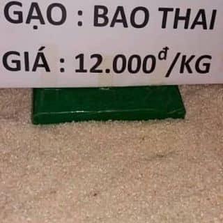 Gạo bao thai của thanhthao515 tại Bắc Kạn - 2487489