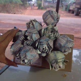 Gap hoa bằng tiền  của tuananh200194 tại Bà Rịa - Vũng Tàu - 1694460