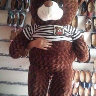 Gấu của tieumuoivi tại Cần Thơ - 2114155