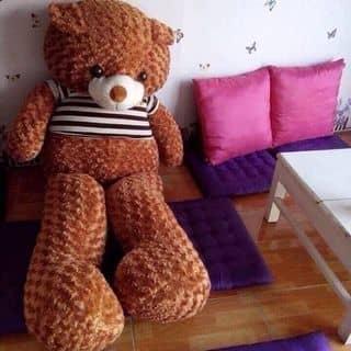 Gấu của tuyetnhi882 tại Vĩnh Yên, Thành Phố Vĩnh Yên, Vĩnh Phúc - 2115227
