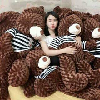 Gau của chanhssheoss tại Quảng Trị - 2200340