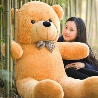 Gấu 1m2 của tranbin37 tại Quảng Nam - 2443730