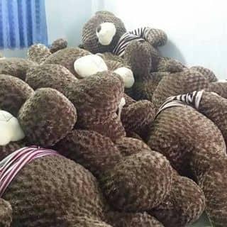 Gấu bông của ainghia2 tại Hồ Chí Minh - 2936645
