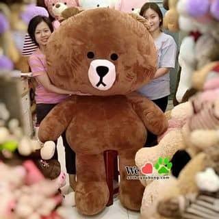 Gấu bông của ainghia2 tại Hồ Chí Minh - 2936660