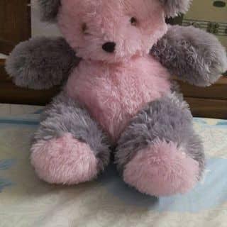 Gấu bông của thinhnoo2 tại Hồ Chí Minh - 2487601