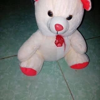 Gấu bông của anphann tại Đắk Lắk - 2636871
