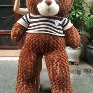 Gấu bông giá rẻ chất lượng của tranthe16 tại Vĩnh Yên, Thành Phố Vĩnh Yên, Vĩnh Phúc - 1224319