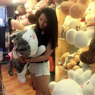 Gấu bông mèo Chii 1m của gaubongxinhshop tại 131 Cù Lao, phường 2, Quận Phú Nhuận, Hồ Chí Minh - 2913985