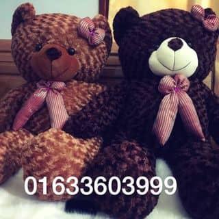 Gấu bông Teddy của tongngoc87 tại Sơn La - 2298687