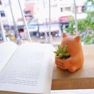 💕 Gấu bụng phệ 💕 của vuonyen98 tại Hồ Chí Minh - 2100155
