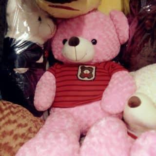 Gấu teddy của linh19964 tại Hồ Chí Minh - 1609426