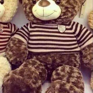 Gấu teddy của kendytrang tại Hải Phòng, Quận Đồ Sơn, Hải Phòng - 2608671