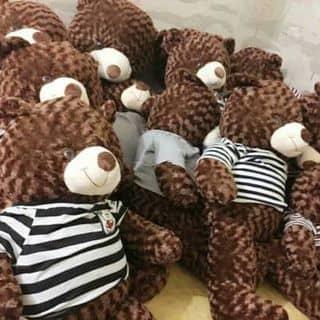 Gấu teddy của myhanh30996 tại 2 Trần Hưng Đạo, Phường 1, Thành Phố Đông Hà, Quảng Trị - 2539304