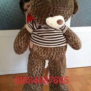 Gấu teddy của huyenngoc301 tại Hồ Chí Minh - 2679169
