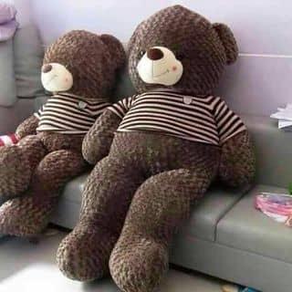Gấu teddy của huyenngoc301 tại Hồ Chí Minh - 2705666
