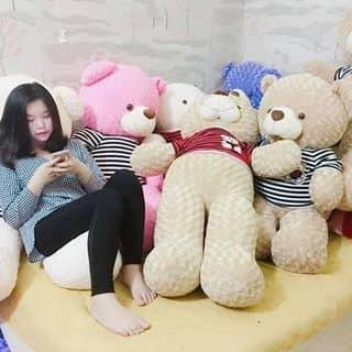 Gấu teddy của nhindoiuale199488 tại Mẹ Suốt, Thành Phố Đồng Hới, Quảng Bình - 2745707