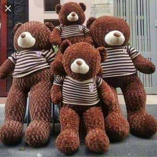 Gấu teddy của hienshamsyh tại đồng phú, Thành Phố Đồng Hới, Quảng Bình - 1259457